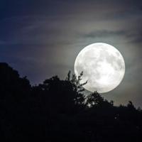 O Bright White Moon - A Poem